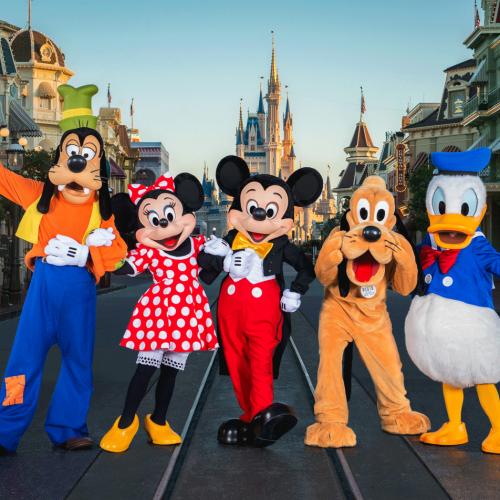 Entradas Base a Walt Disney World