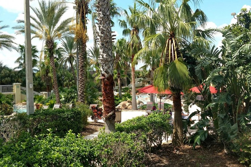 /hotelphotos/thumb-860x573-483698-Regal Palm Water Park.jpg