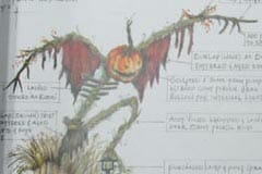 UNiversal sketchbook images