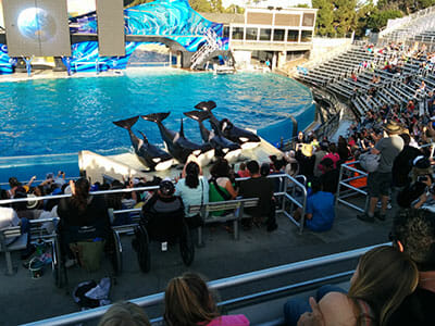 orlandovacation_seaworld-handicapped-seating