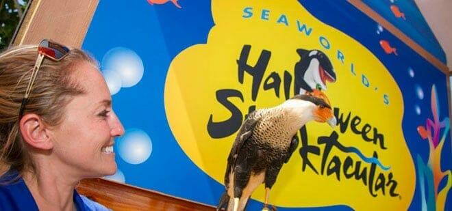 SeaWorld Halloween Animal Ambassadors
