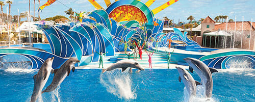 View SeaWorld Orlando Vacation packages