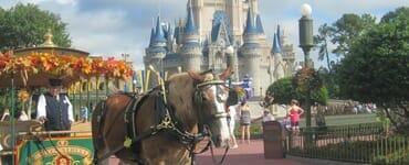 Orlando_Vacation_DisneyWorld