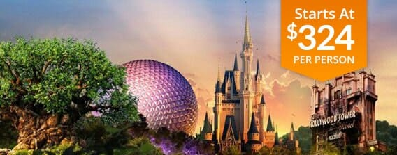 Two Day Disney World Package