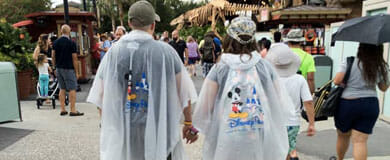 Walt Disney World Ponchos