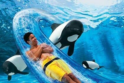 SeaWorld for Teens