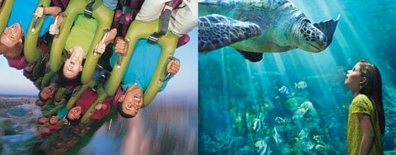 2 Day orlando vacation package featuring Universal Studios and SeaWorld