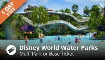 disney world waterparks