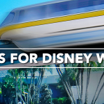 10 Tips for Visiting Disney World During this Summer - Orlando Vacation