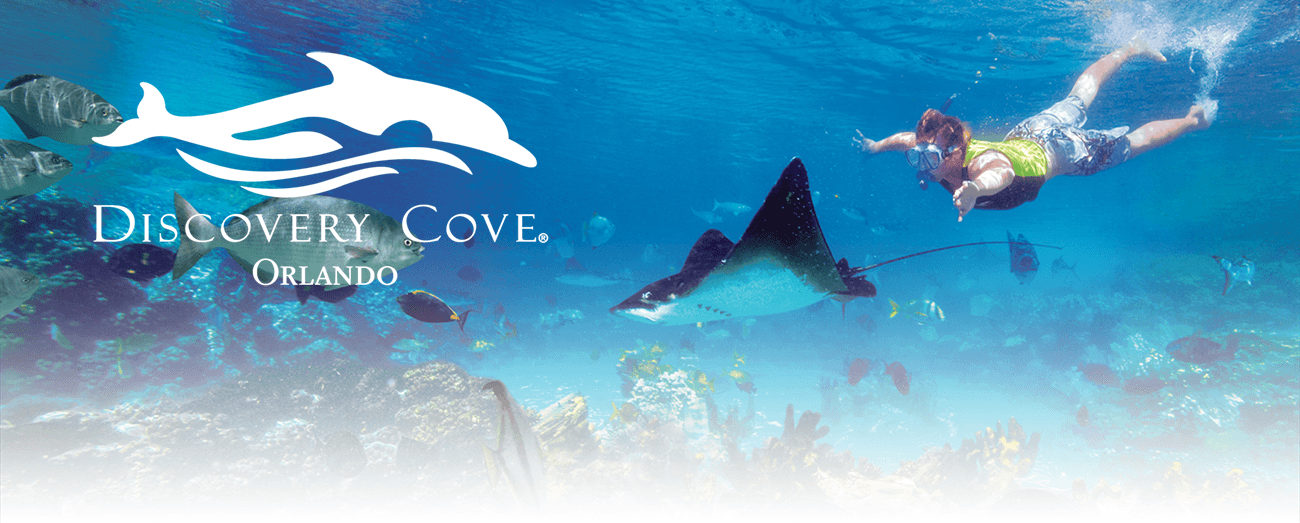 Discovery Cove - Orlando Vacation