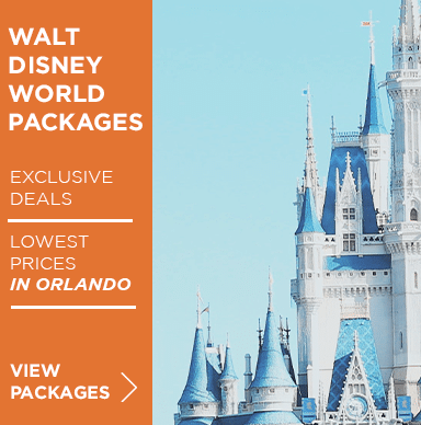 Disney World Package-Home