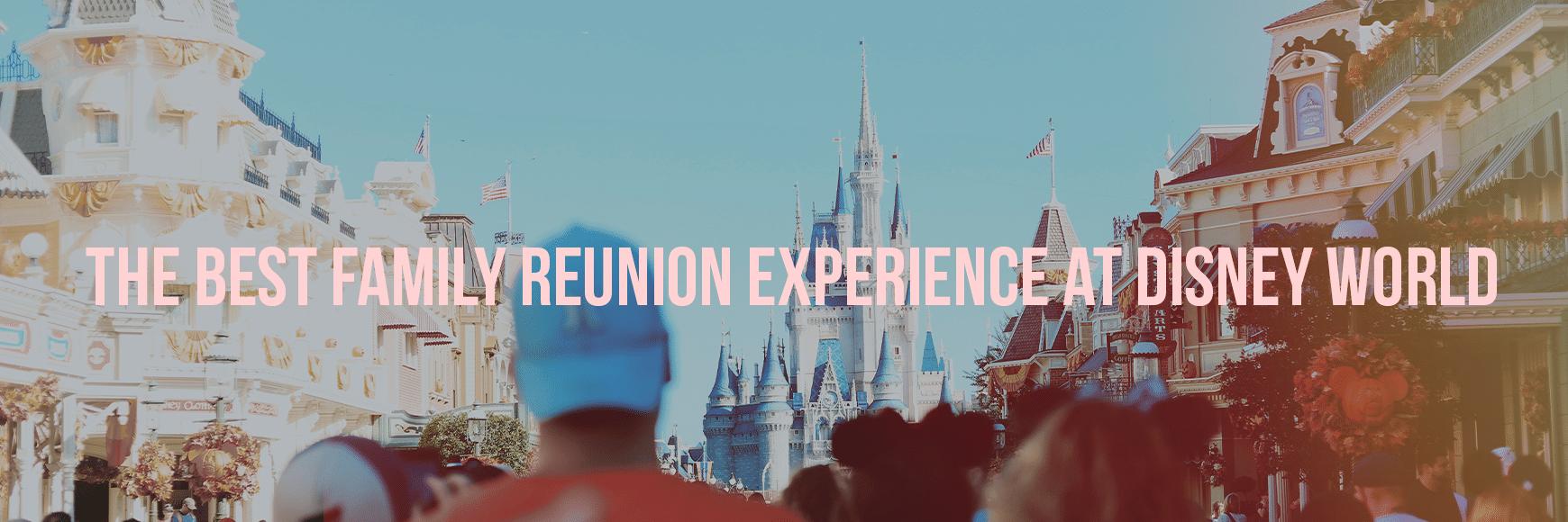Family Experience - Disney World Vacation