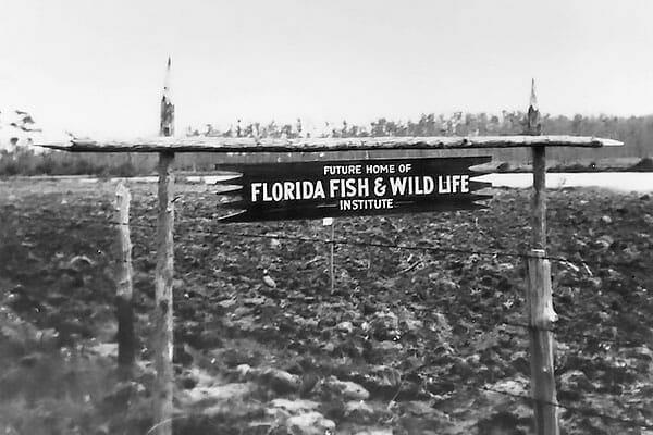 Gatorland-Florida Wildlife Institute