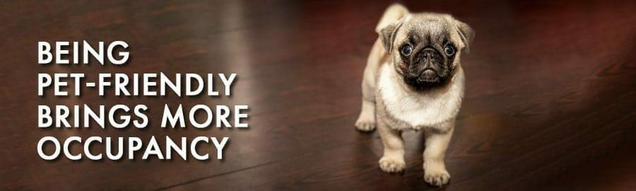 Pet-Friendly More Occupancy